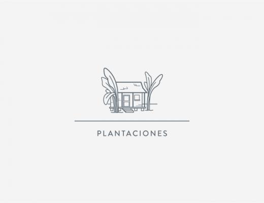 Portada PLANTACIONES